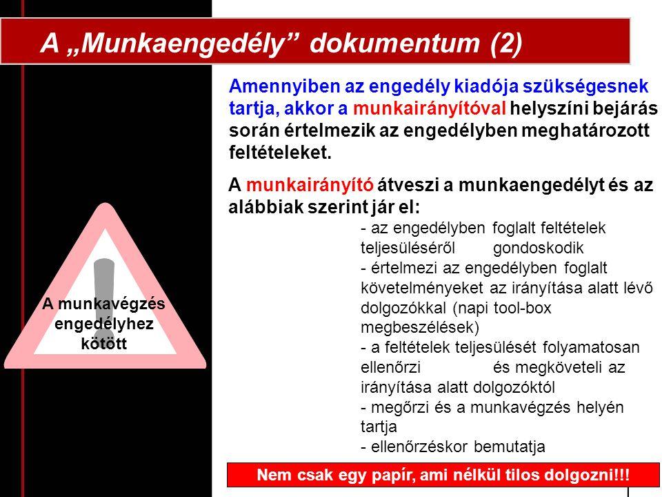 """A """"Munkaengedély dokumentum (2)"""
