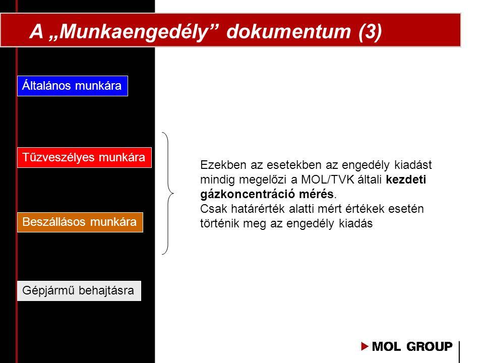 """A """"Munkaengedély dokumentum (3)"""