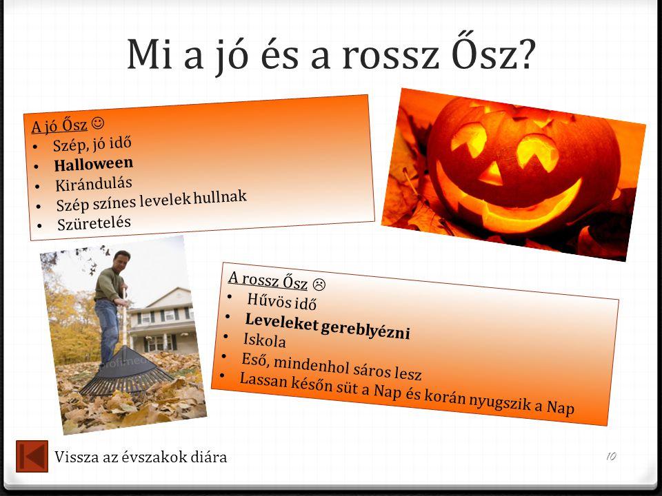 Mi a jó és a rossz Ősz A jó Ősz  Szép, jó idő Halloween Kirándulás