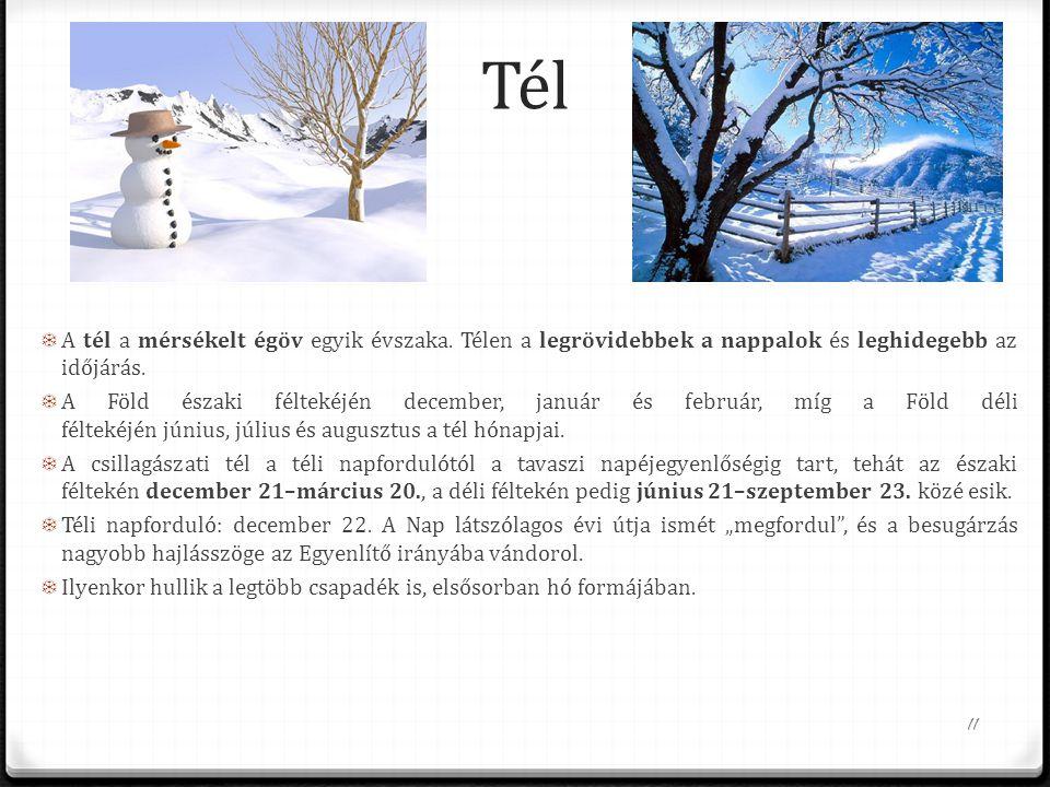 Tél A tél a mérsékelt égöv egyik évszaka. Télen a legrövidebbek a nappalok és leghidegebb az időjárás.