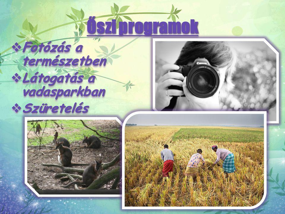 Őszi programok Fotózás a természetben Látogatás a vadasparkban