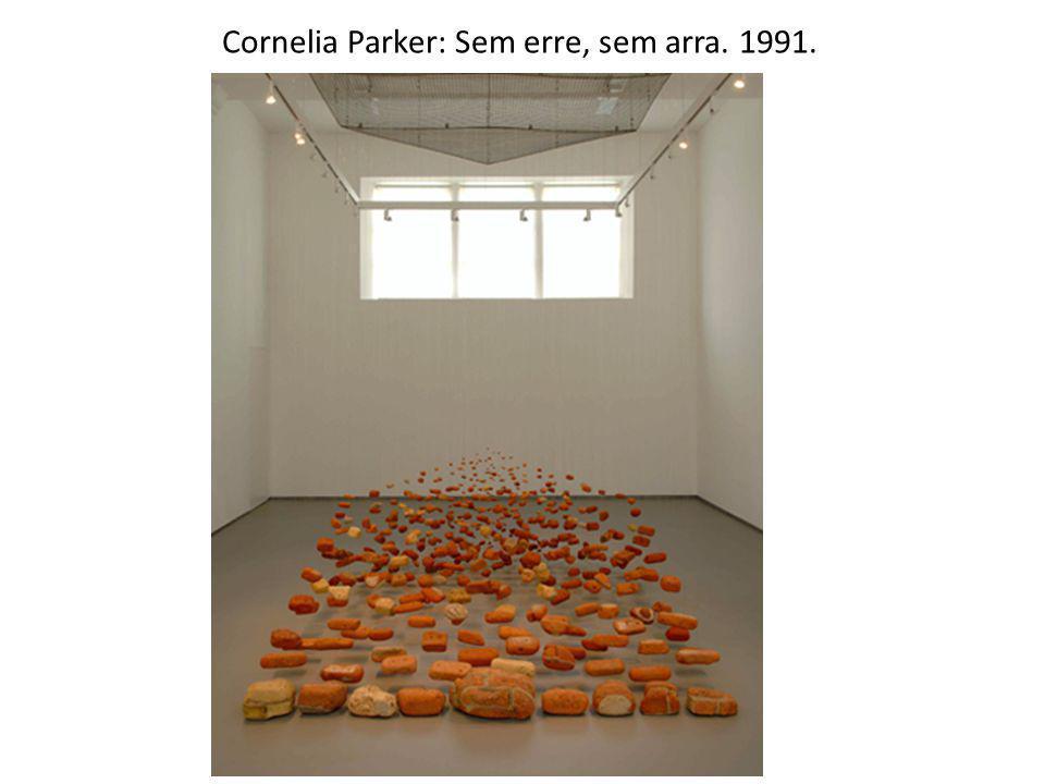 Cornelia Parker: Sem erre, sem arra. 1991.