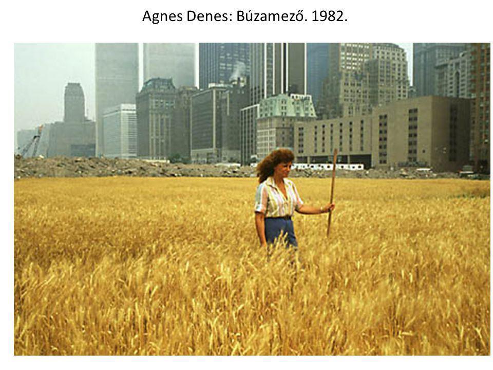 Agnes Denes: Búzamező. 1982.