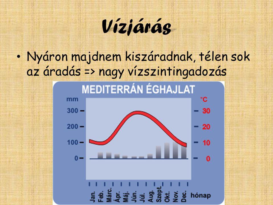 Vízjárás Nyáron majdnem kiszáradnak, télen sok az áradás => nagy vízszintingadozás