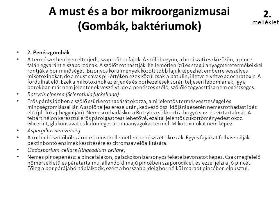 A must és a bor mikroorganizmusai (Gombák, baktériumok)