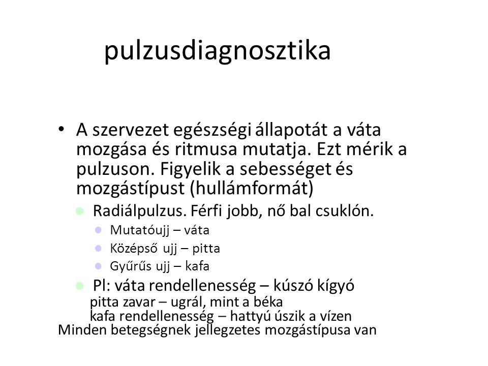pulzusdiagnosztika
