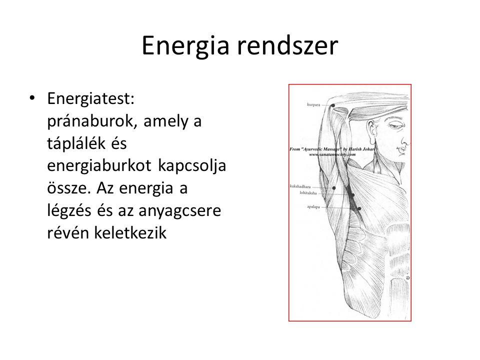 Energia rendszer Energiatest: pránaburok, amely a táplálék és energiaburkot kapcsolja össze.