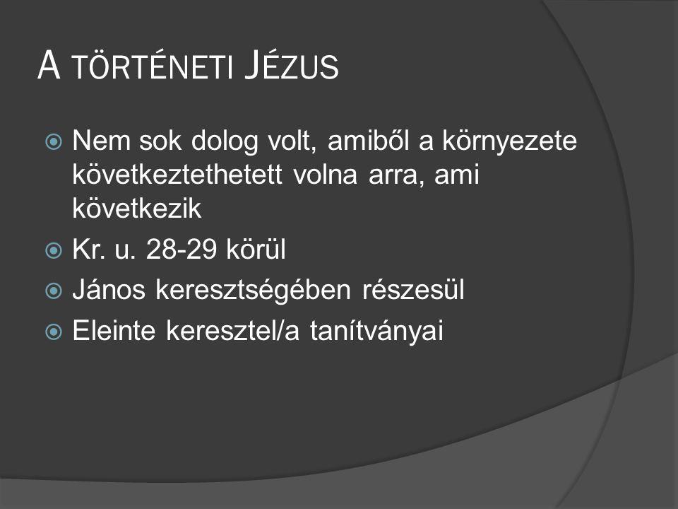 A történeti Jézus Nem sok dolog volt, amiből a környezete következtethetett volna arra, ami következik.