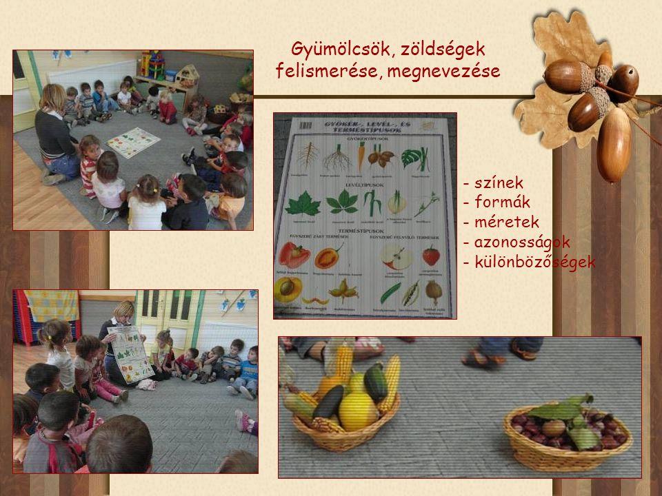 Gyümölcsök, zöldségek felismerése, megnevezése