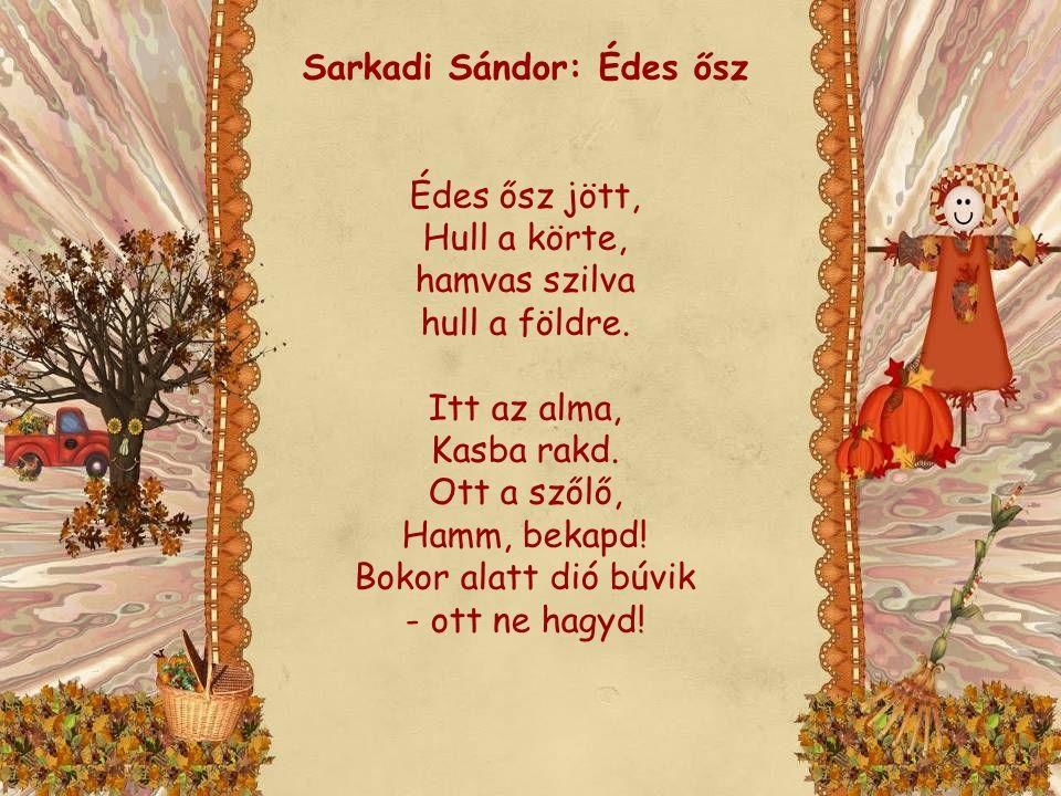Sarkadi Sándor: Édes ősz