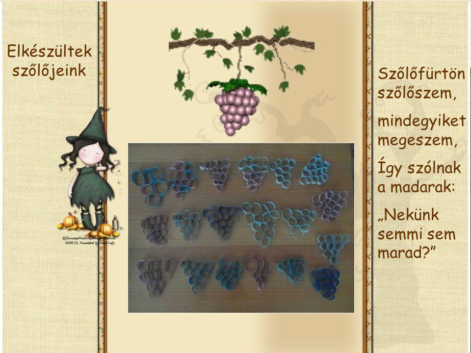 Elkészültek szőlőjeink