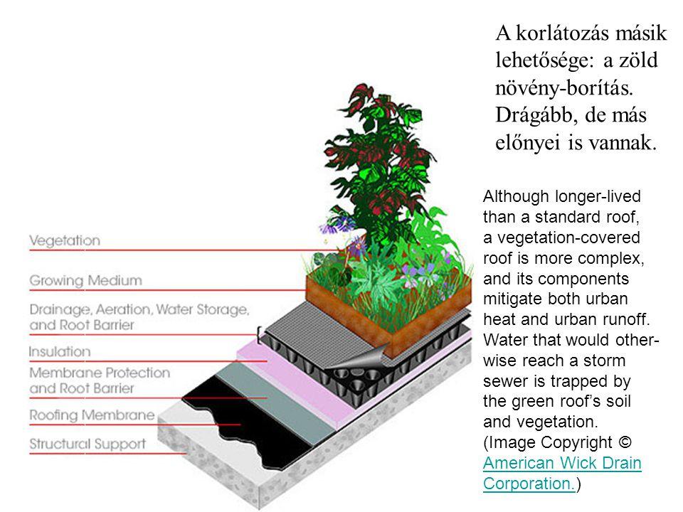 A korlátozás másik lehetősége: a zöld növény-borítás. Drágább, de más