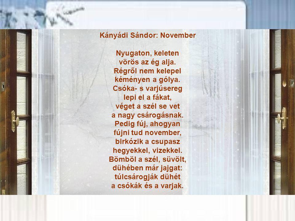 Kányádi Sándor: November