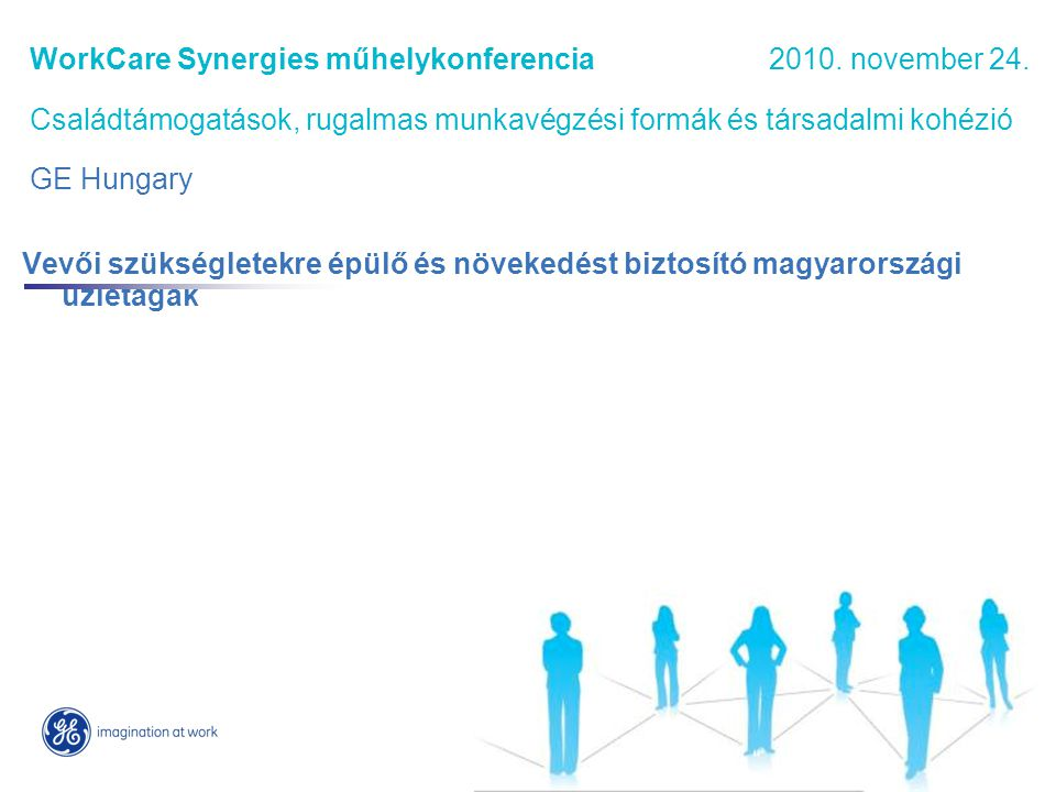 WorkCare Synergies műhelykonferencia. 2010. november 24