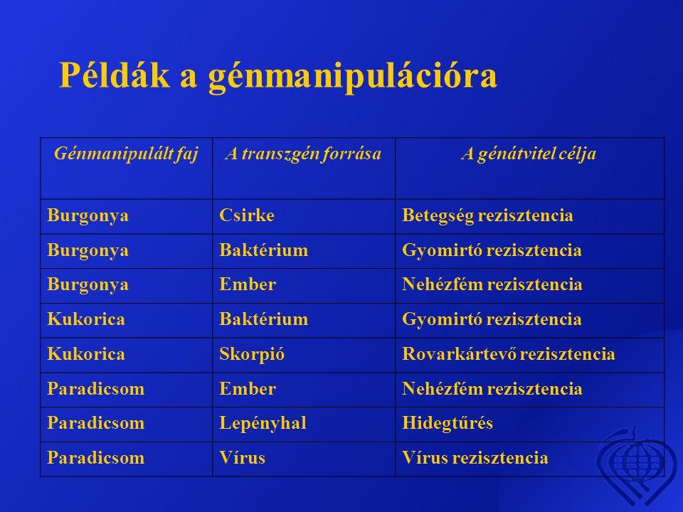 Példák a génmanipulációra