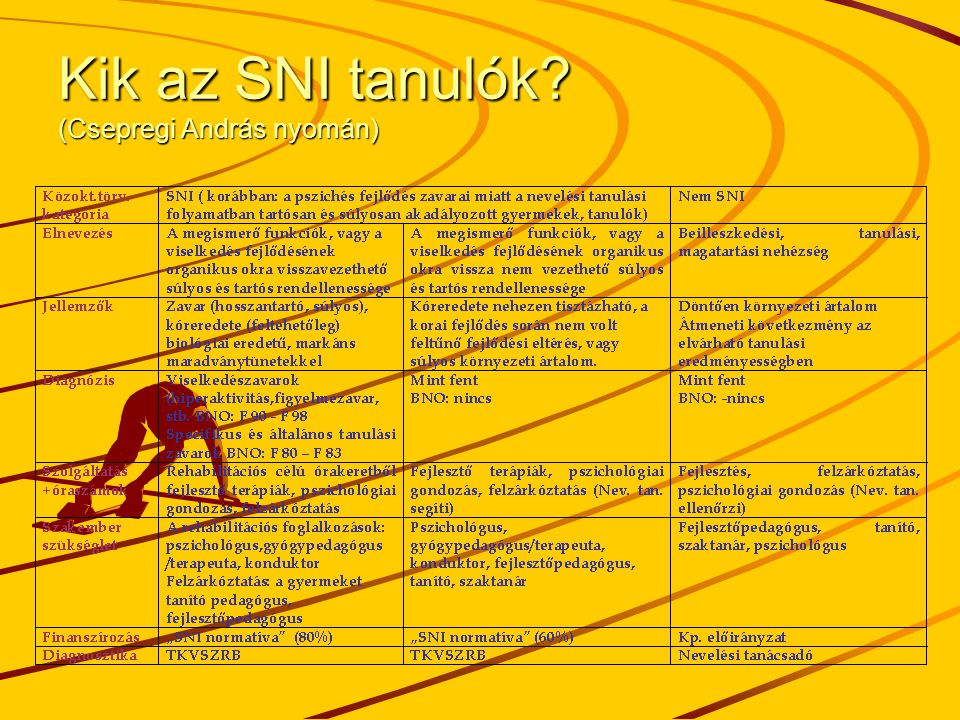 Kik az SNI tanulók (Csepregi András nyomán)
