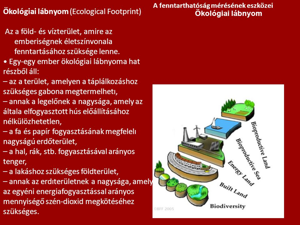 Ökológiai lábnyom (Ecological Footprint)