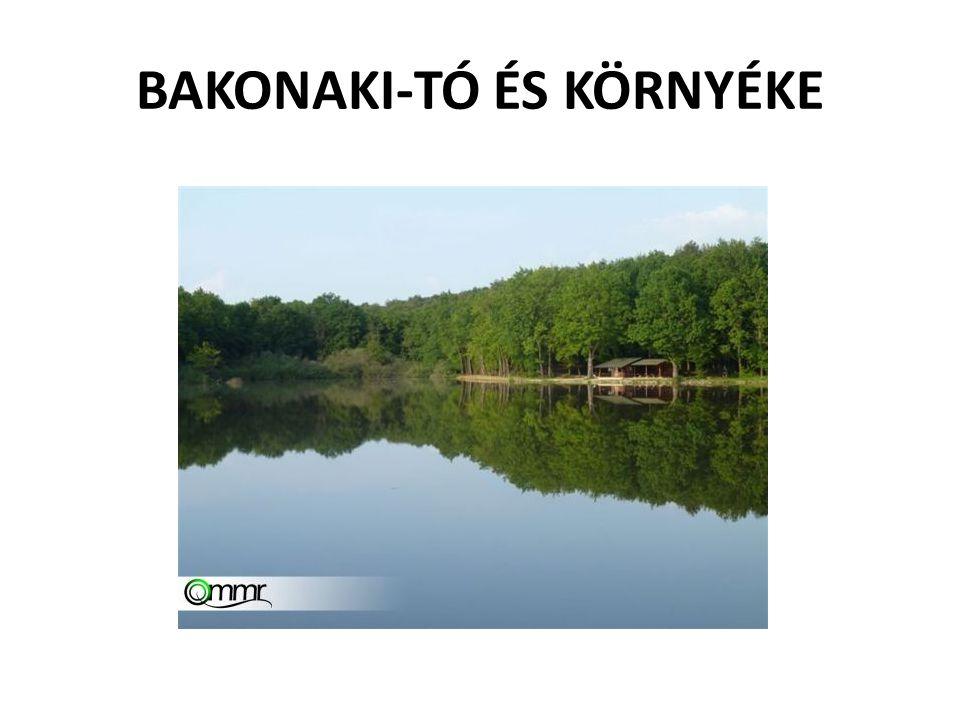BAKONAKI-TÓ ÉS KÖRNYÉKE