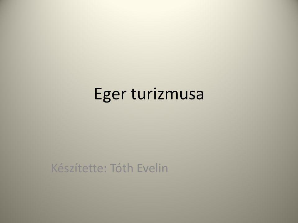 Készítette: Tóth Evelin