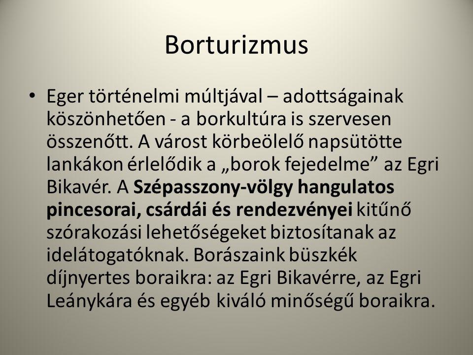 Borturizmus