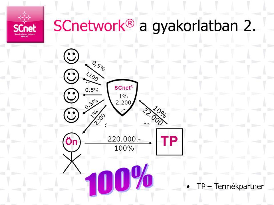 SCnetwork® a gyakorlatban 2.