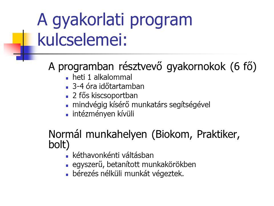 A gyakorlati program kulcselemei: