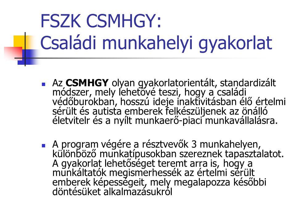 FSZK CSMHGY: Családi munkahelyi gyakorlat