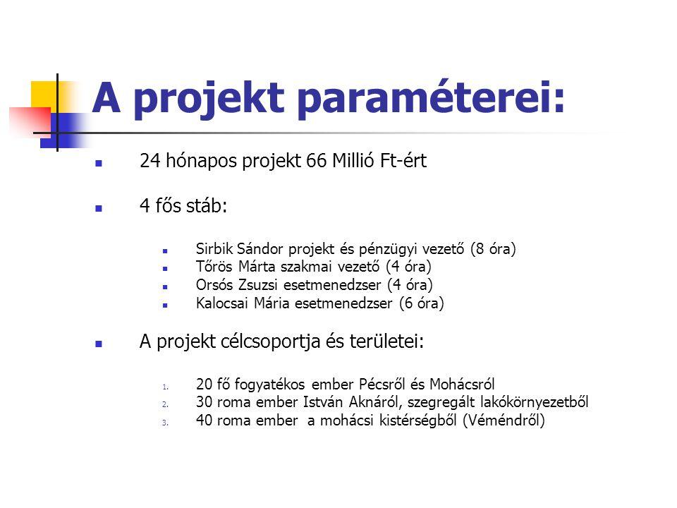 A projekt paraméterei: