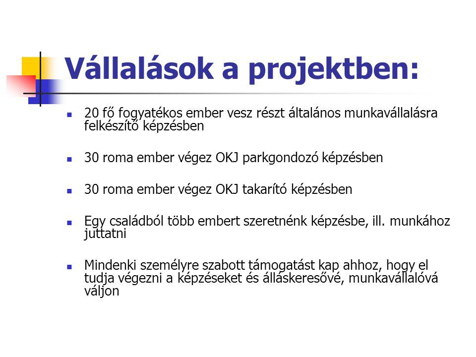 Vállalások a projektben: