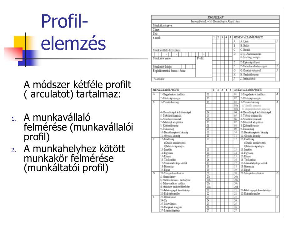 Profil- elemzés A módszer kétféle profilt ( arculatot) tartalmaz: