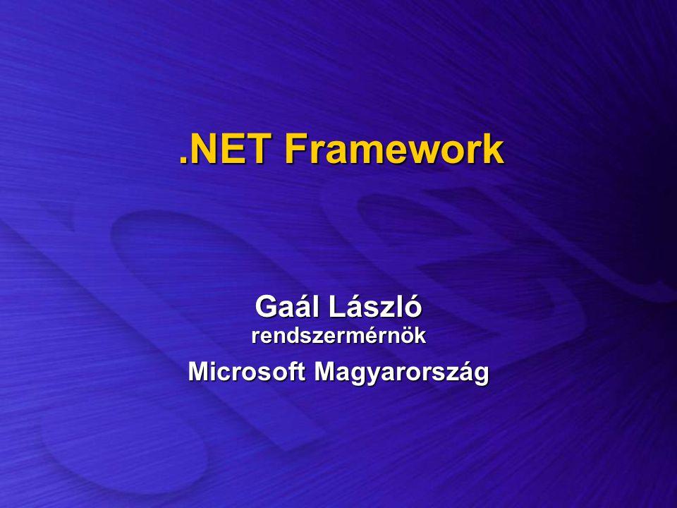 Gaál László rendszermérnök Microsoft Magyarország