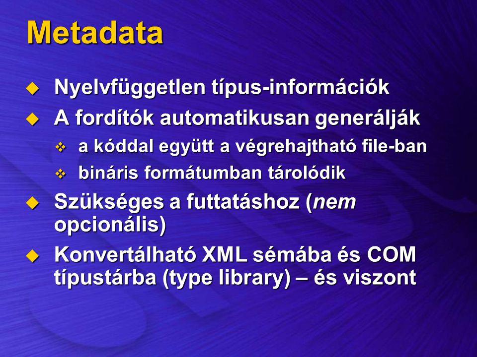 Metadata Nyelvfüggetlen típus-információk