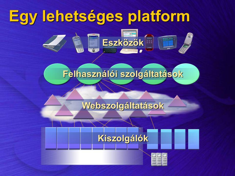 Egy lehetséges platform