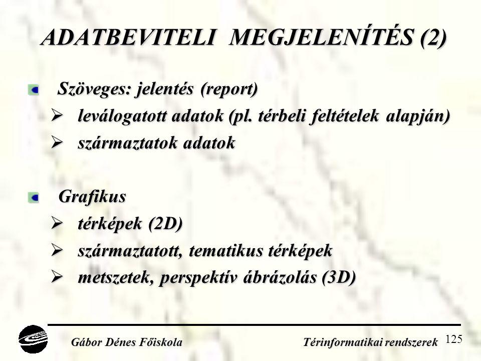 ADATBEVITELI MEGJELENÍTÉS (2)