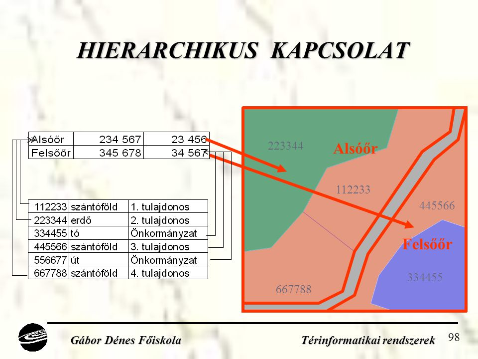 HIERARCHIKUS KAPCSOLAT