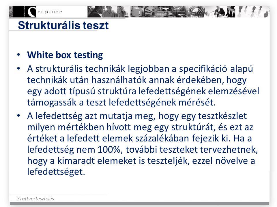 Strukturális teszt White box testing