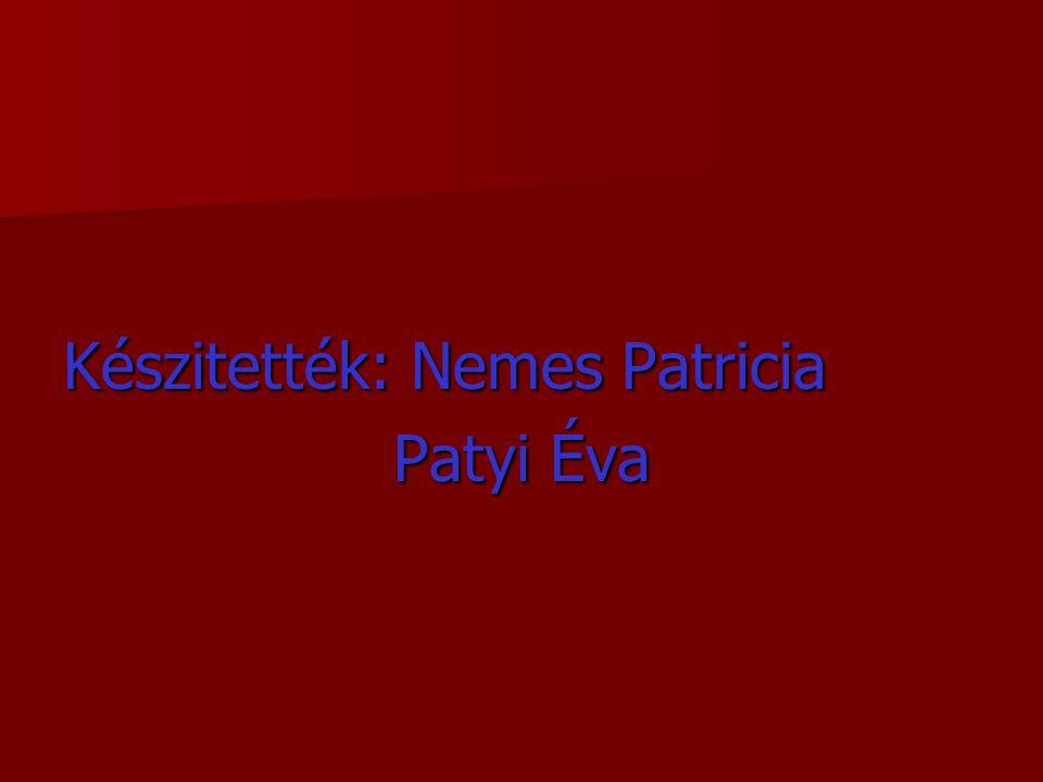 Készitették: Nemes Patricia
