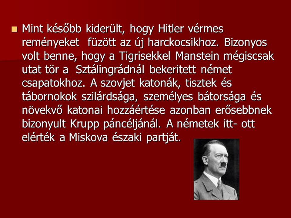 Mint később kiderült, hogy Hitler vérmes reményeket füzött az új harckocsikhoz.