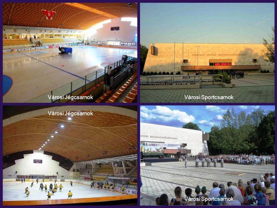Városi Jégcsarnok Városi Sportcsarnok Városi Jégcsarnok Városi Sportcsarnok