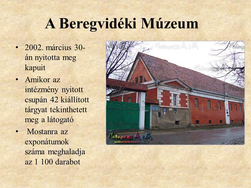 A Beregvidéki Múzeum 2002. március 30-án nyitotta meg kapuit