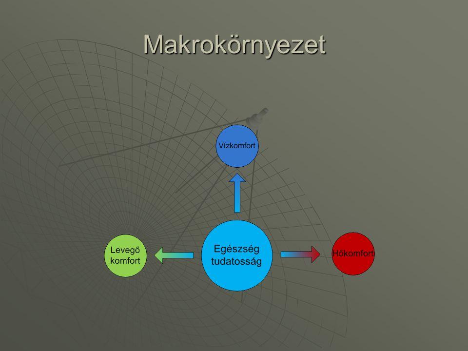 Makrokörnyezet