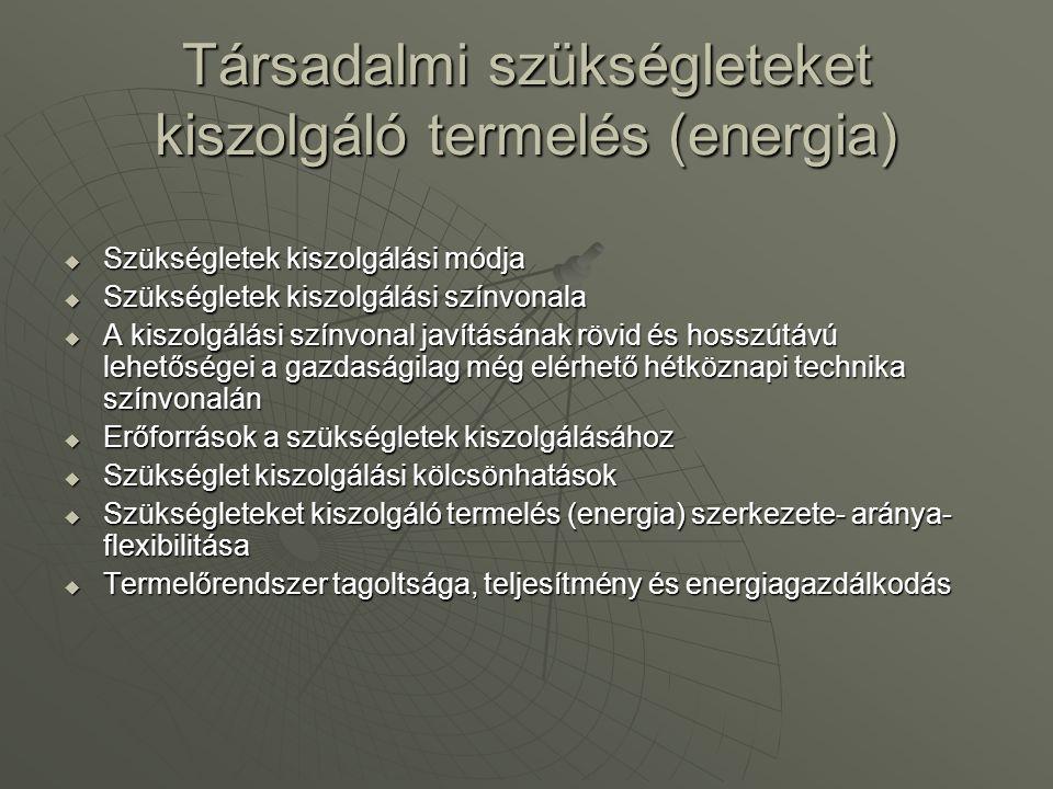 Társadalmi szükségleteket kiszolgáló termelés (energia)