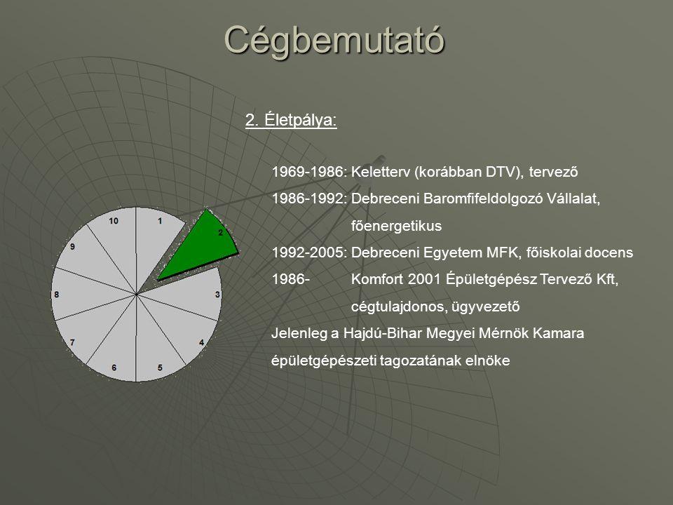 Cégbemutató 2. Életpálya: 1969-1986: Keletterv (korábban DTV), tervező
