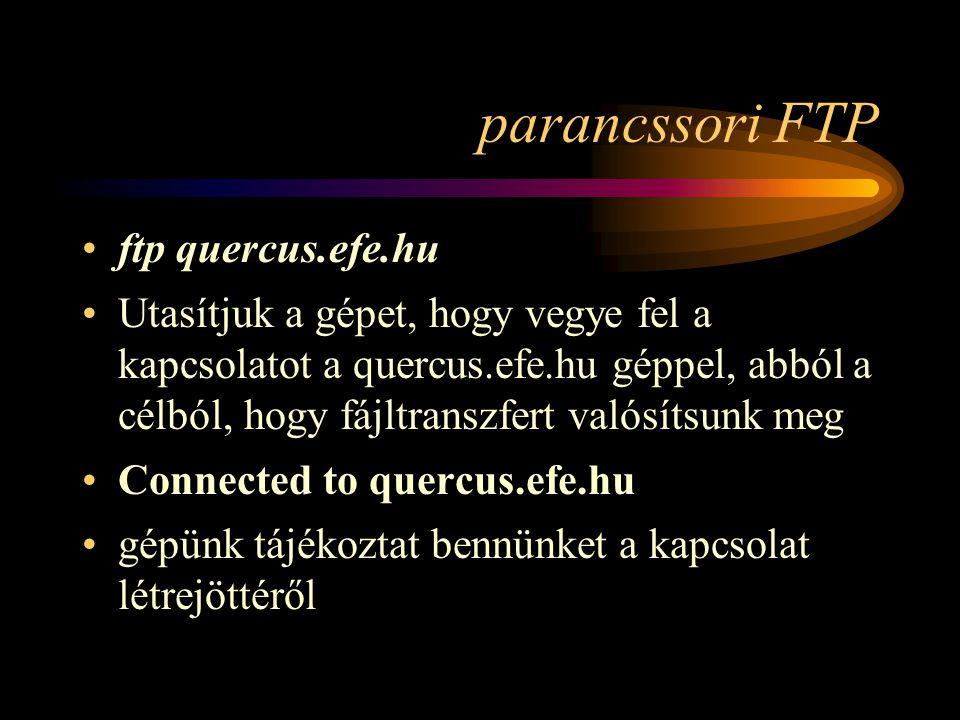parancssori FTP ftp quercus.efe.hu