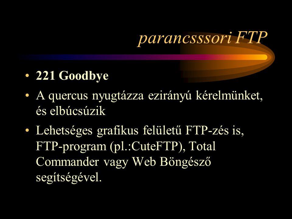 parancsssori FTP 221 Goodbye