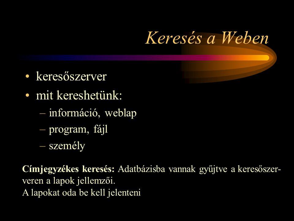 Keresés a Weben keresőszerver mit kereshetünk: információ, weblap