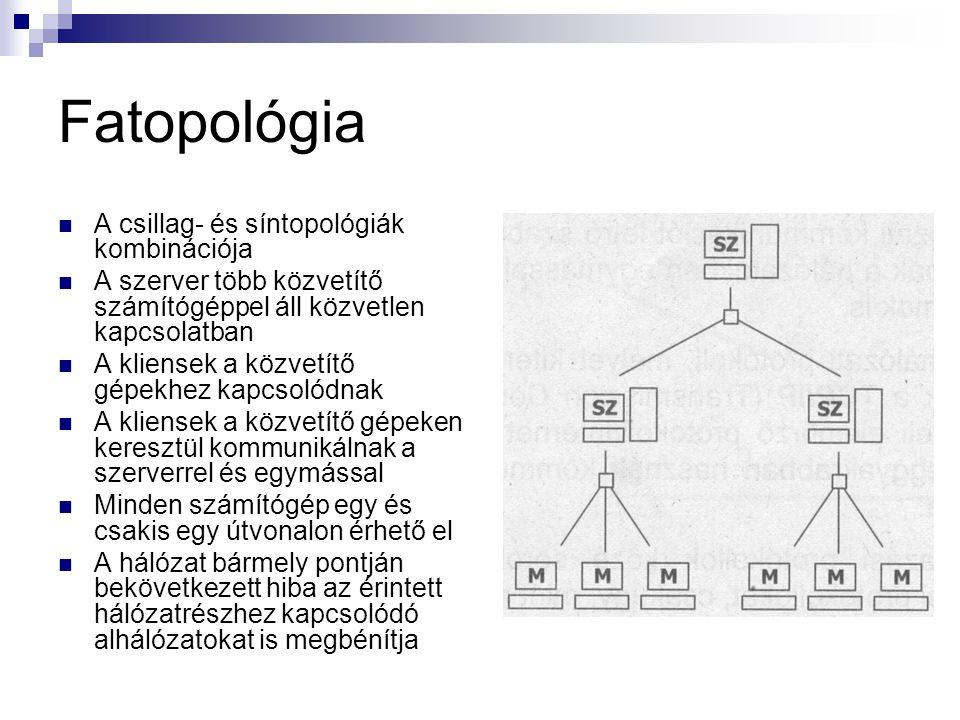 Fatopológia A csillag- és síntopológiák kombinációja
