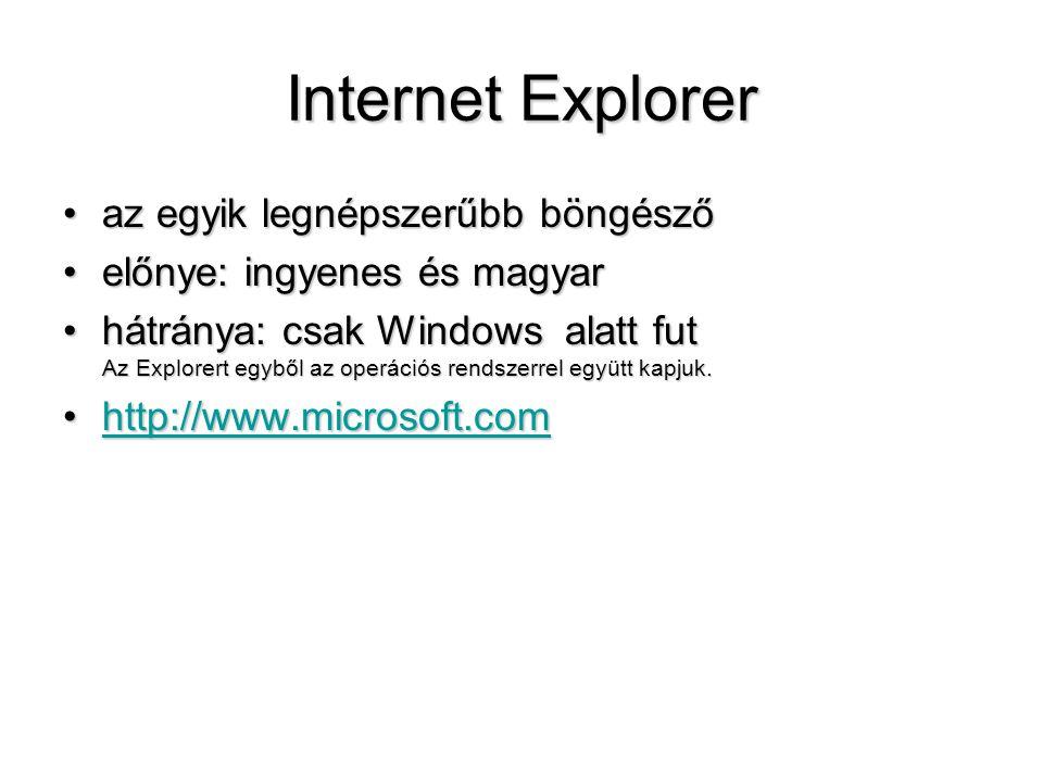 Internet Explorer az egyik legnépszerűbb böngésző