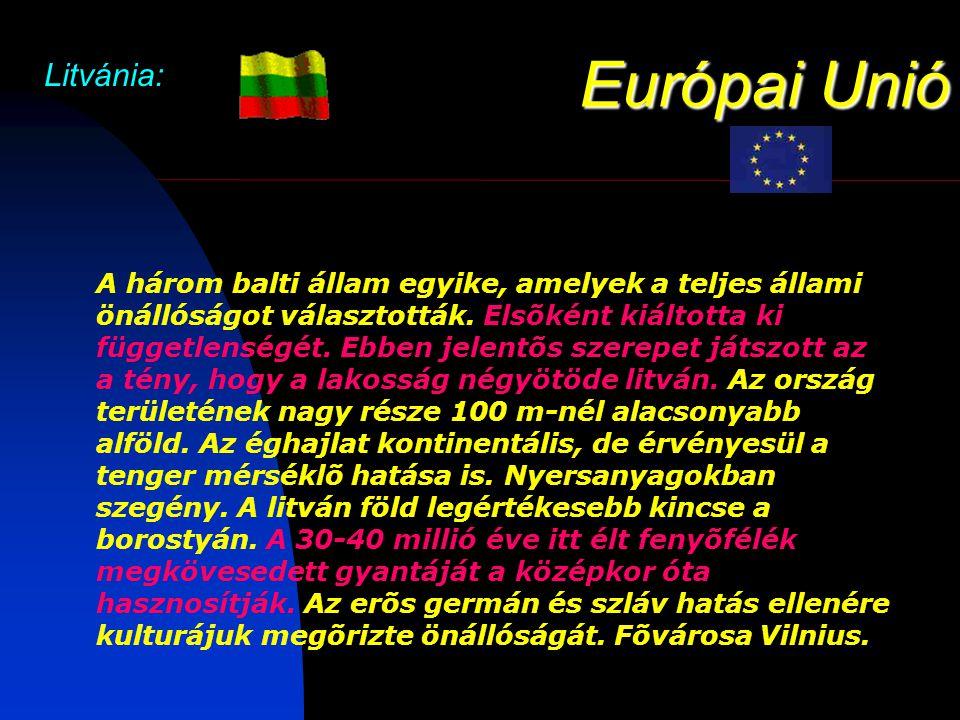 Európai Unió Litvánia: