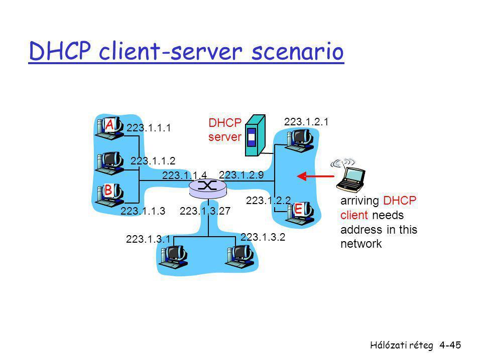 DHCP client-server scenario